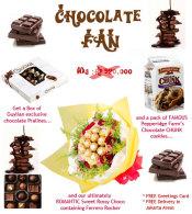 florist-jakarta-chocolate-fan-2015