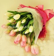 tulips-buket-kadoplus-kirim-bunga-valentine